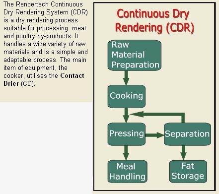 Rendering_CDR_Rendertech