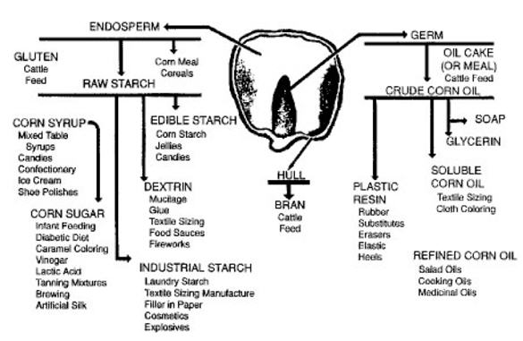 Corn_Diagram_Uses_EPA